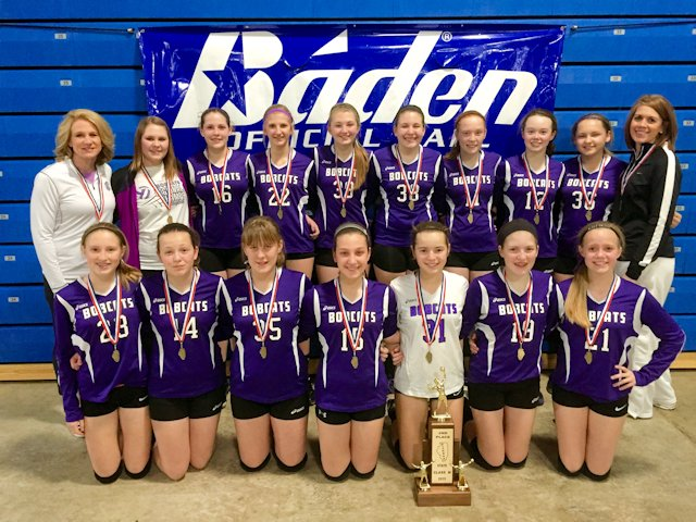 2015 Volleyball Class M 2nd Breese